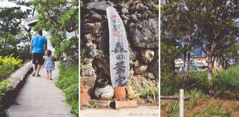 walking up a path to visit a workshop, I just love the signs here in Okinawa!, old rusty bus on one of the properties