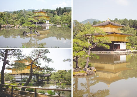 The Golden Pavilion/Kinkaku