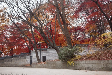 Seoul day 2 (3 of 13)