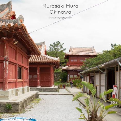 Fun Flying Four Murasaki Mura 1 (1 of 1)