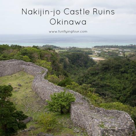 Fun Flying Four Nakijin Castle  (1 of 1)