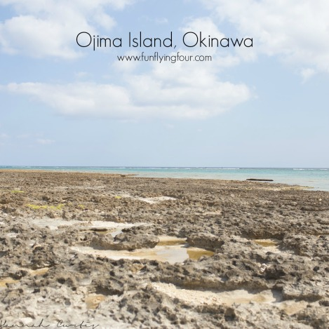 Fun Flying Four Ojima Island (3 of 9)