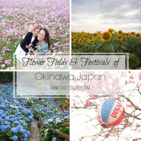 Flower Fields of Okinawa Fun Flying Four