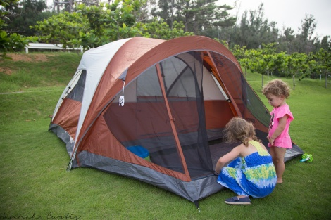 they LOVE zipping & unzipping the tent