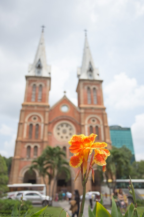 day 159 | Notre Dame Cathedral, Ho Chi Minh City, Vietnam