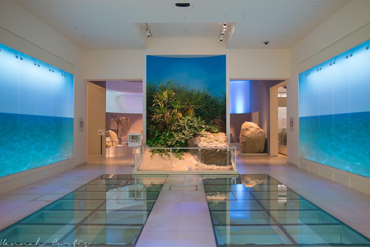 Okinawa Prefectural Museum & Art Museum  FUN FLYING FOUR
