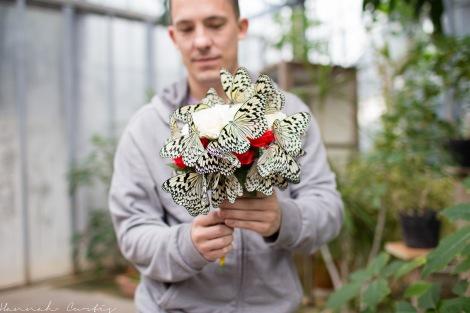 day 292 | a bouquet of butterflies