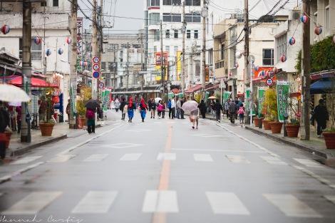 Nago Cherry Blosson Festival, Jan, 2014