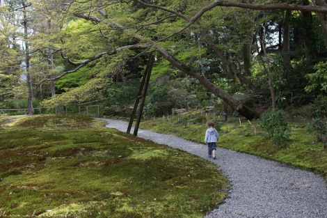 Clio exploring the moss gardens at Yoshikien Garden, Nara