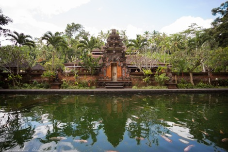 can feed the fish here at Pura Tirta Empul